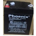 acquy phoenix TS1250;12v-5Ah